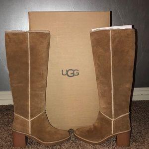 Kasen Tall UGG boot size 6